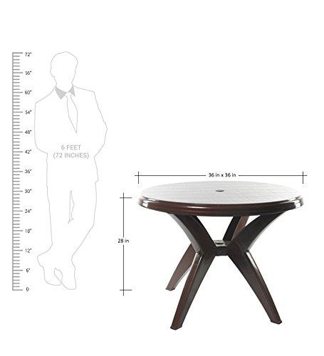 Cello Presto Dining Table (Matte Brown)